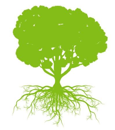 De boom van ons bestaan